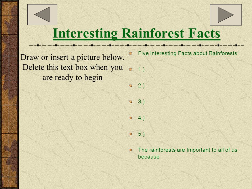 What can YOU do to help save the Tropical Rainforests.