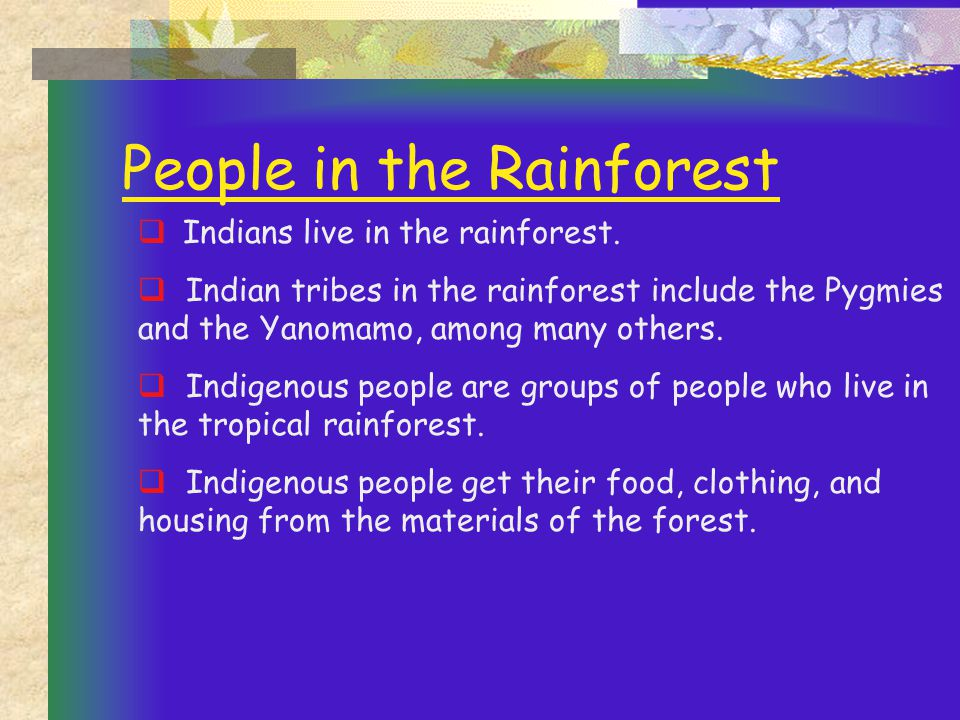 People in the Rainforest  Indians live in the rainforest.