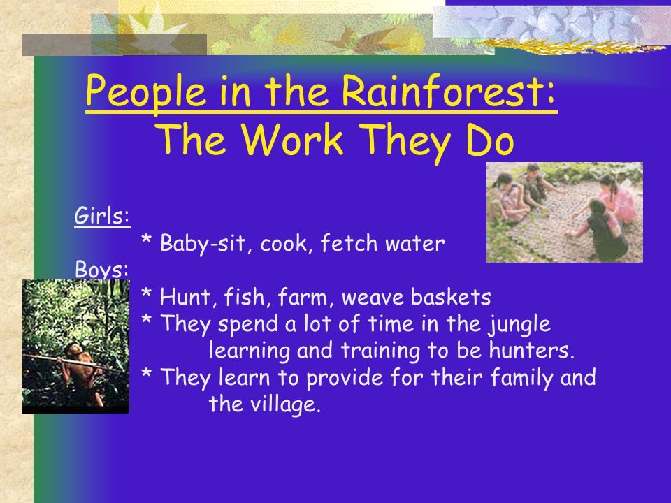 People in the Rainforest: The Work They Do Girls: * Baby-sit, cook, fetch water Boys: * Hunt, fish, farm, weave baskets * They spend a lot of time in the jungle learning and training to be hunters.