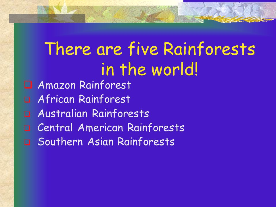 There are five Rainforests in the world.