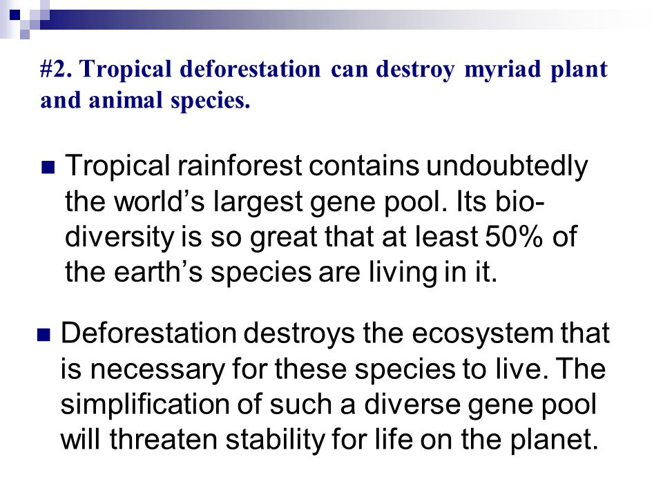 Tropical rainforest contains undoubtedly the world's largest gene pool.