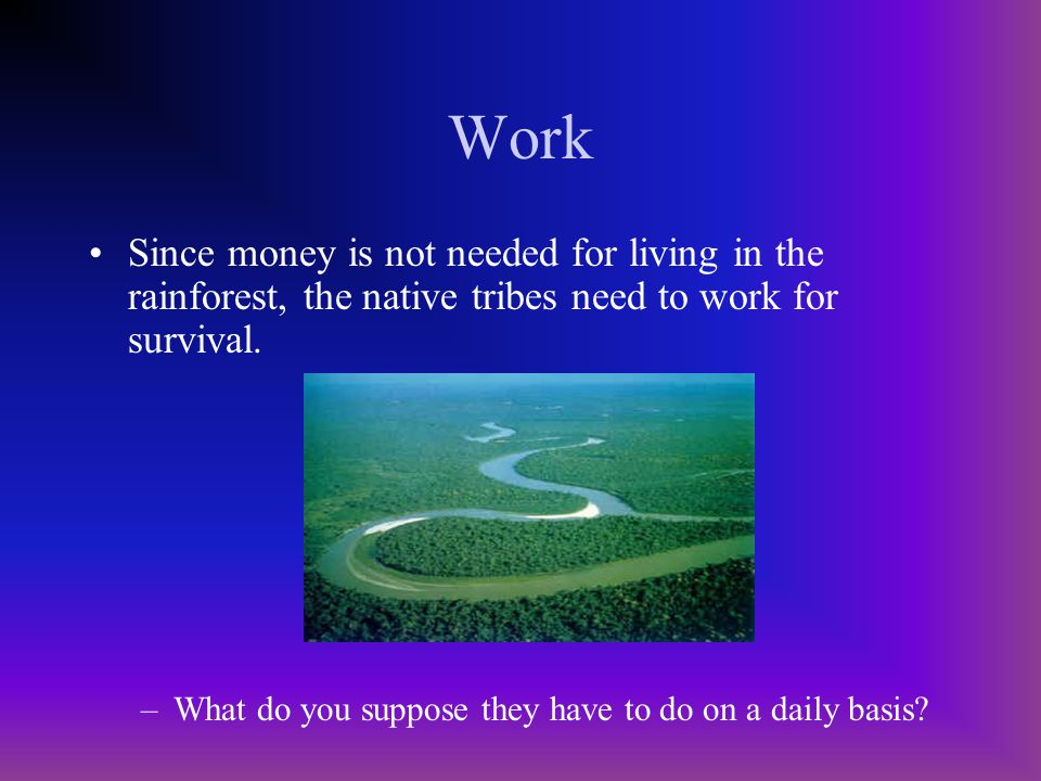 Work Since money is not needed for living in the rainforest, the native tribes need to work for survival.