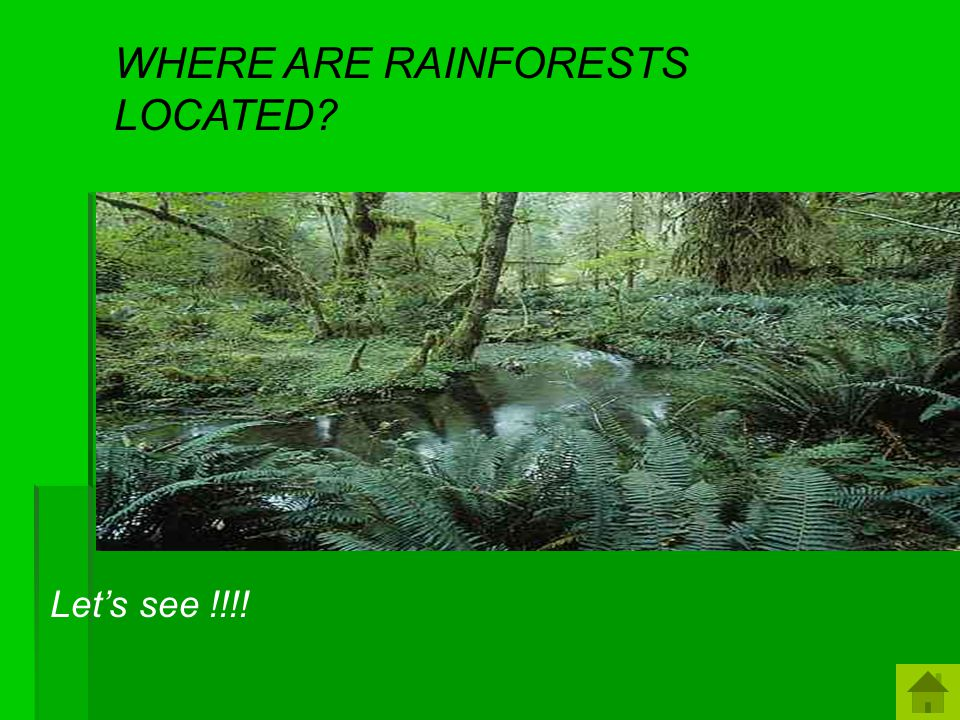 Do you know where rain forests get their name. You guessed it.