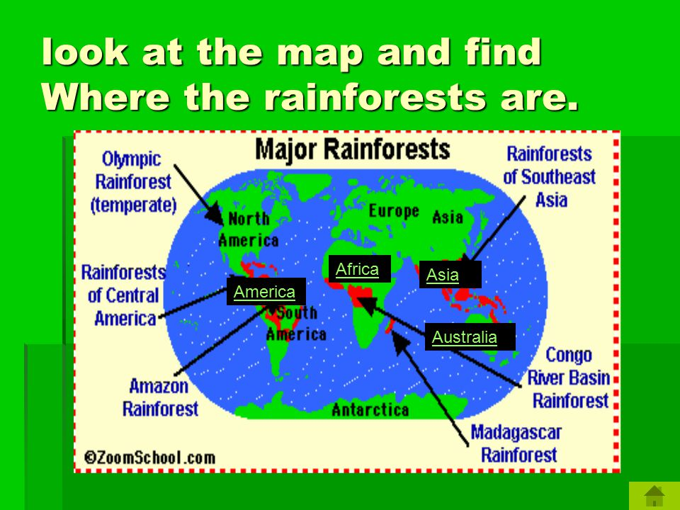 WHERE ARE RAINFORESTS LOCATED? Let's see !!!!