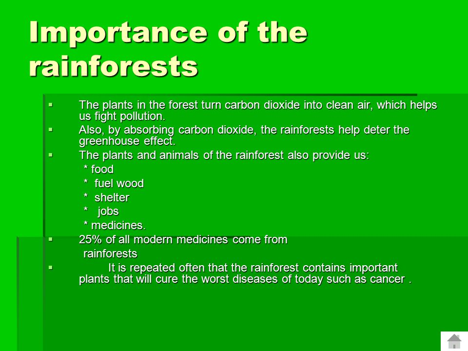 WHY ARE RAINFORESTS IMPORTANT. Rainforests are important to the global ecosystem.