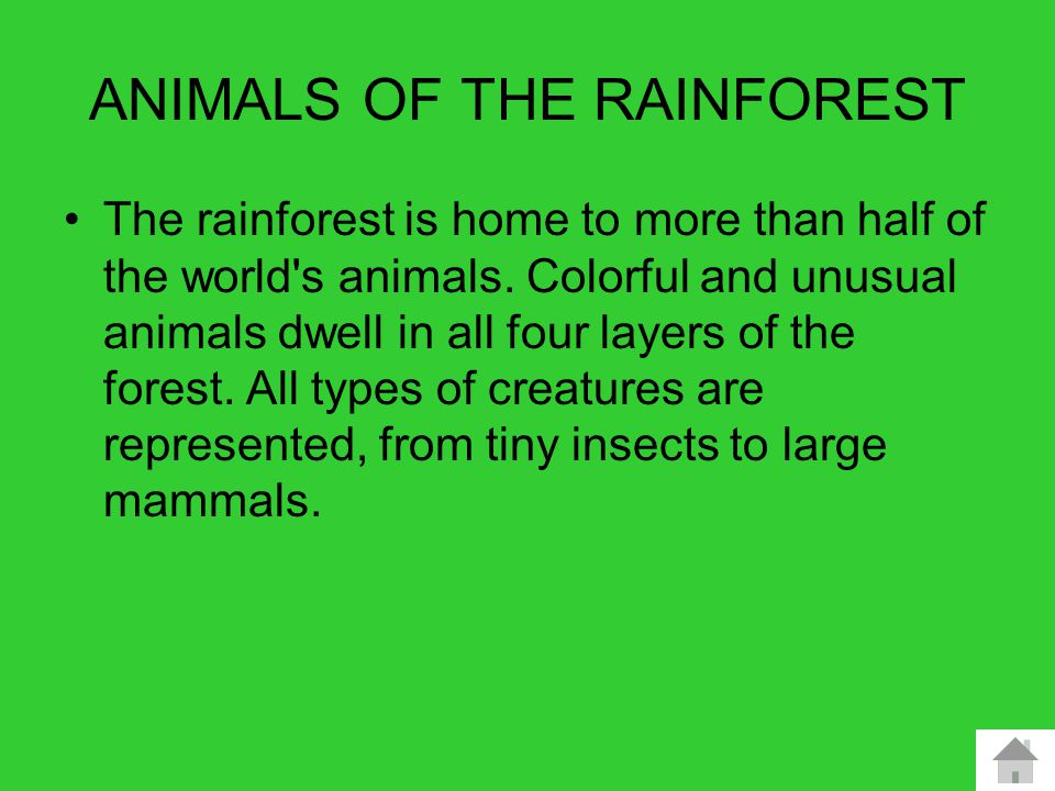What ….and who …… RAINFORESTS PROVIDE A HOME FOR WILDLIFE, PLANTS and people Habitants