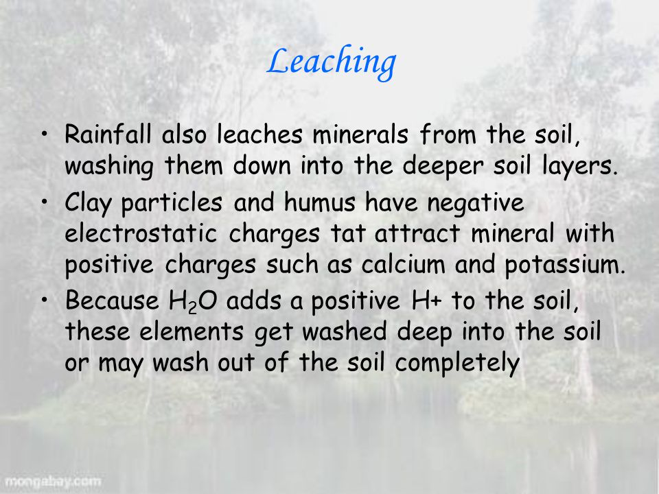 Leaching Rainfall also leaches minerals from the soil, washing them down into the deeper soil layers.