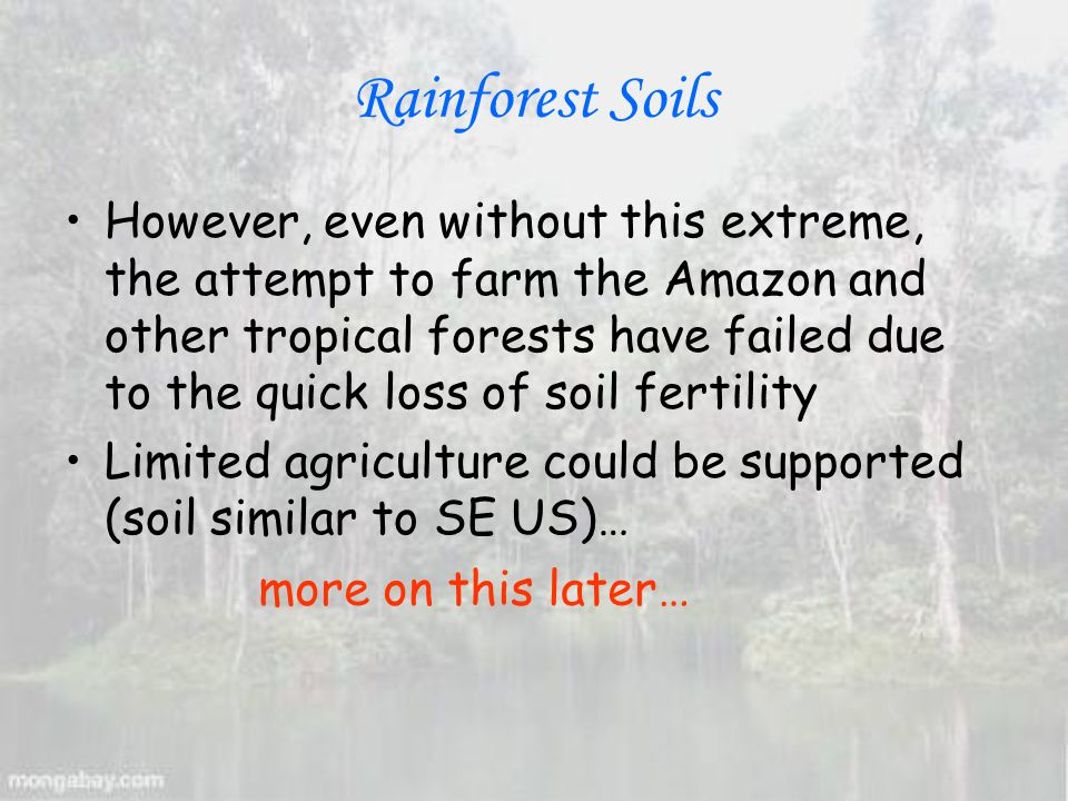 Rainforest Soils However, even without this extreme, the attempt to farm the Amazon and other tropical forests have failed due to the quick loss of soil fertility Limited agriculture could be supported (soil similar to SE US)… more on this later…