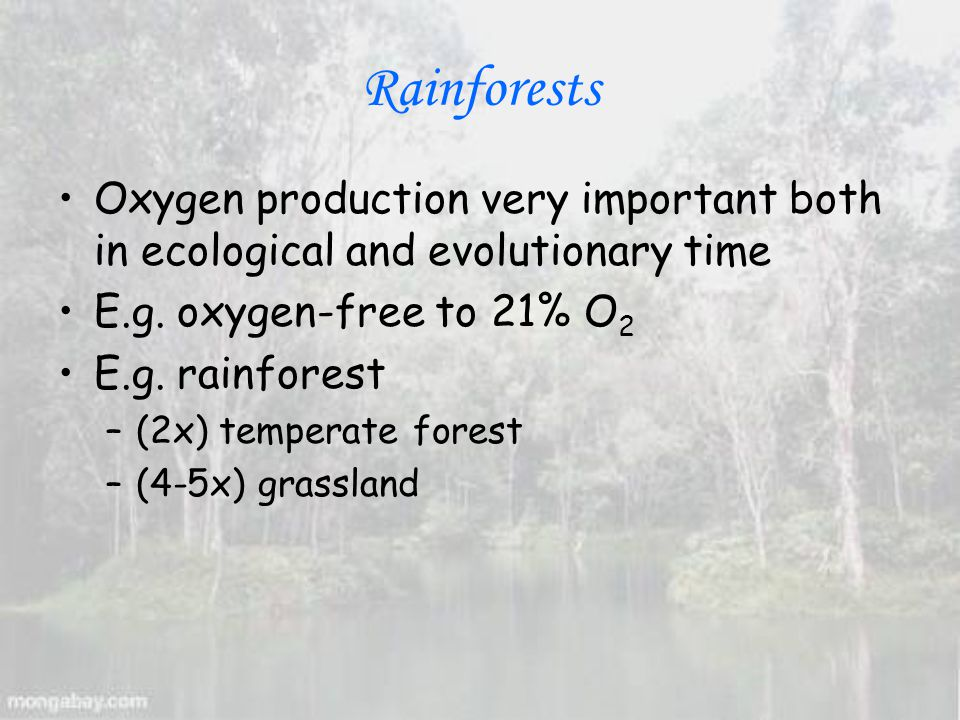 Oxygen production very important both in ecological and evolutionary time E.g.