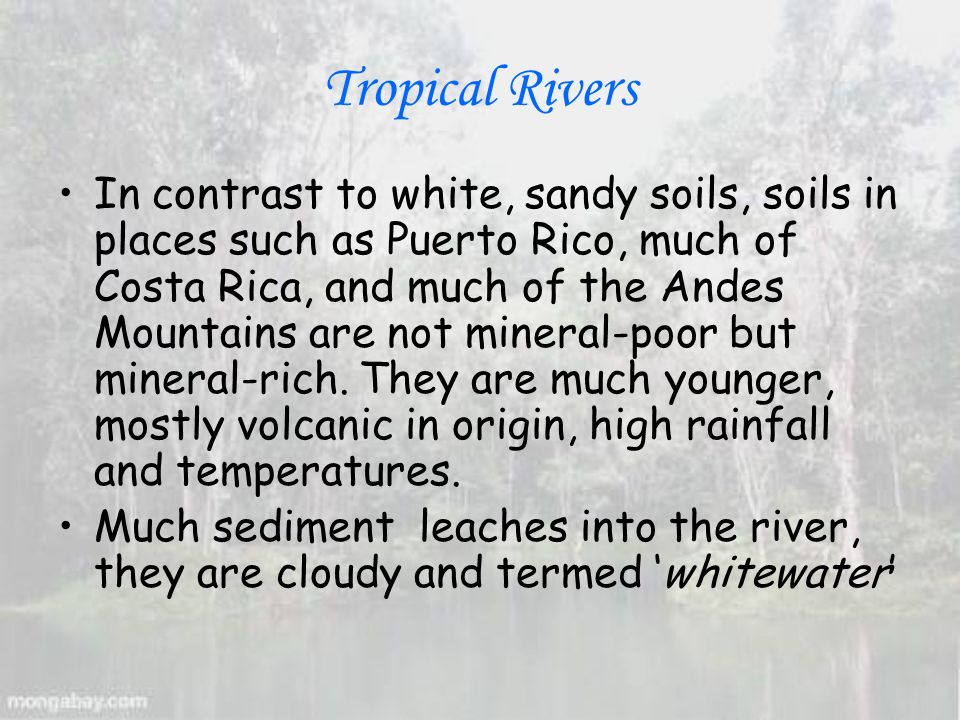 Tropical Rivers In contrast to white, sandy soils, soils in places such as Puerto Rico, much of Costa Rica, and much of the Andes Mountains are not mineral-poor but mineral-rich.