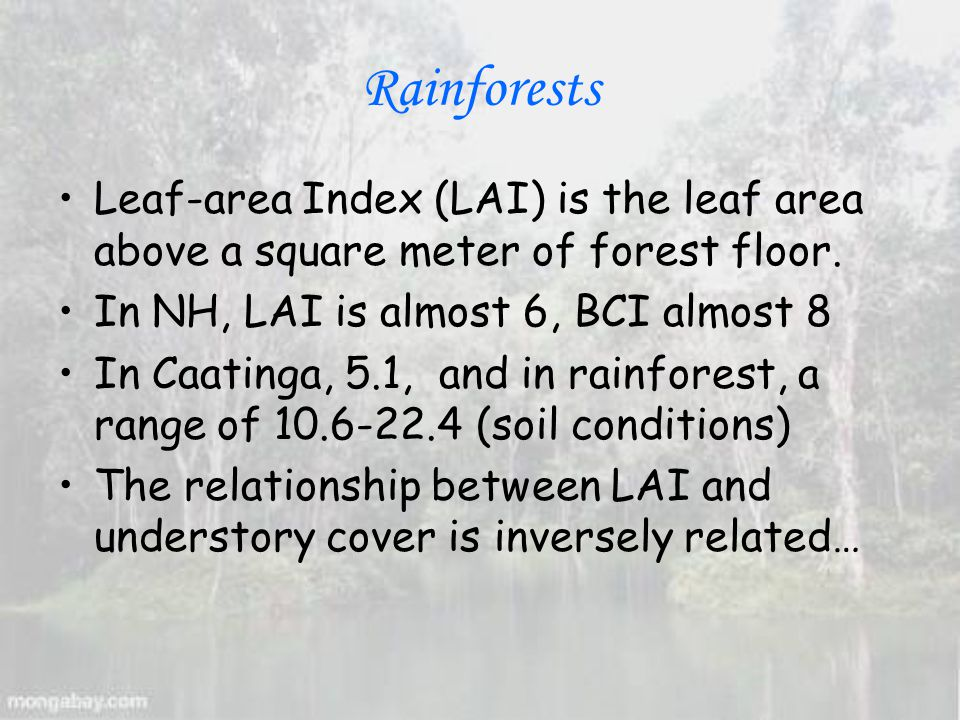 Rainforests Leaf-area Index (LAI) is the leaf area above a square meter of forest floor.