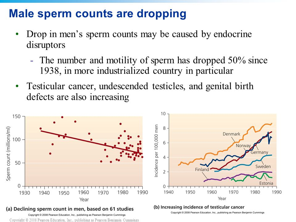 Copyright © 2008 Pearson Education, Inc., publishing as Pearson Benjamin Cummings Male sperm counts are dropping Drop in men's sperm counts may be cau
