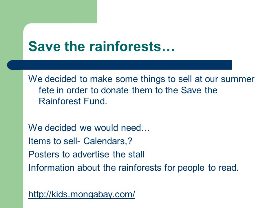 Save the rainforests… We decided to make some things to sell at our summer fete in order to donate them to the Save the Rainforest Fund.