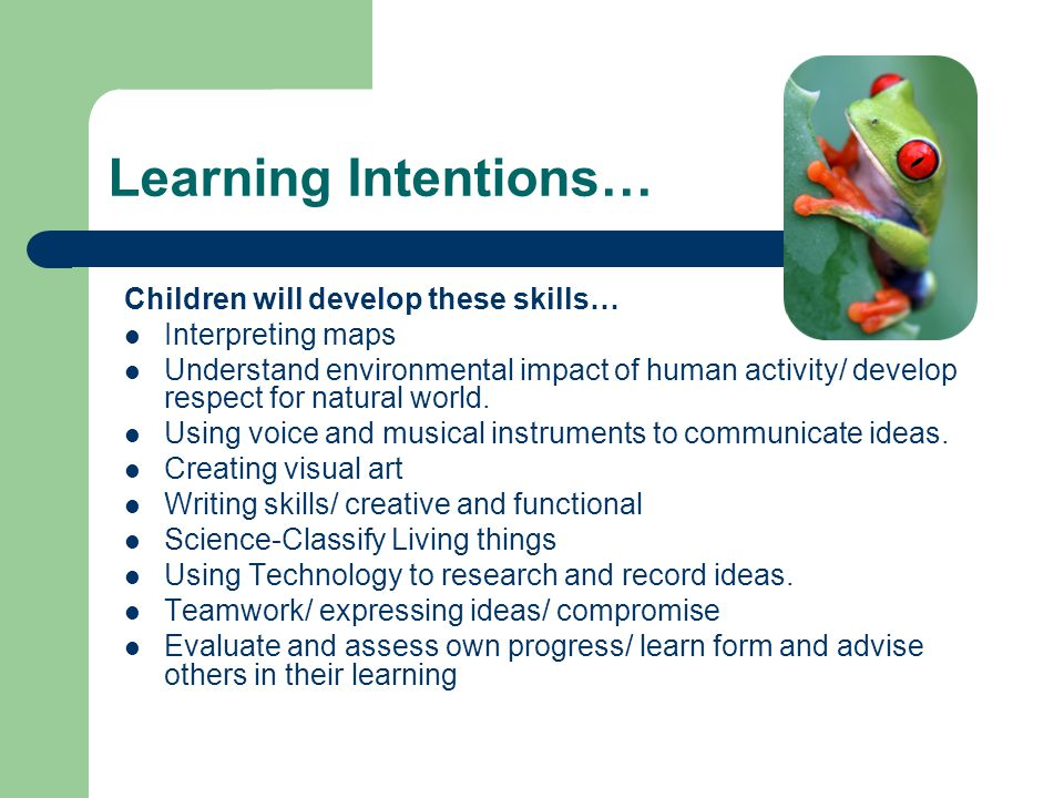 Learning Intentions… Children will develop these skills… Interpreting maps Understand environmental impact of human activity/ develop respect for natural world.