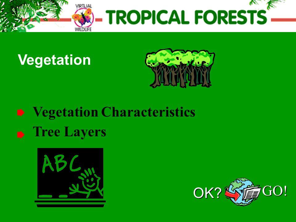 Vegetation Characteristics Vegetation Tree LayersOK? GO!