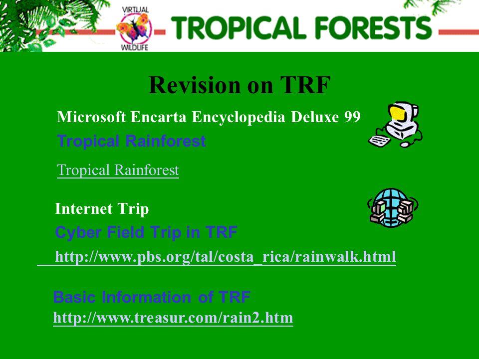 Revision on TRF Internet Trip Cyber Field Trip in TRF http://www.pbs.org/tal/costa_rica/rainwalk.html Microsoft Encarta Encyclopedia Deluxe 99 Tropical Rainforest Basic Information of TRF http://www.treasur.com/rain2.htm
