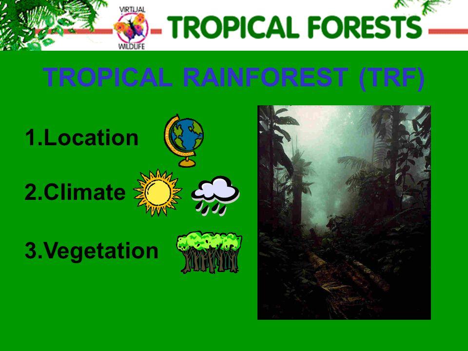 TROPICAL RAINFOREST (TRF) 2.Climate 3.Vegetation 1.Location