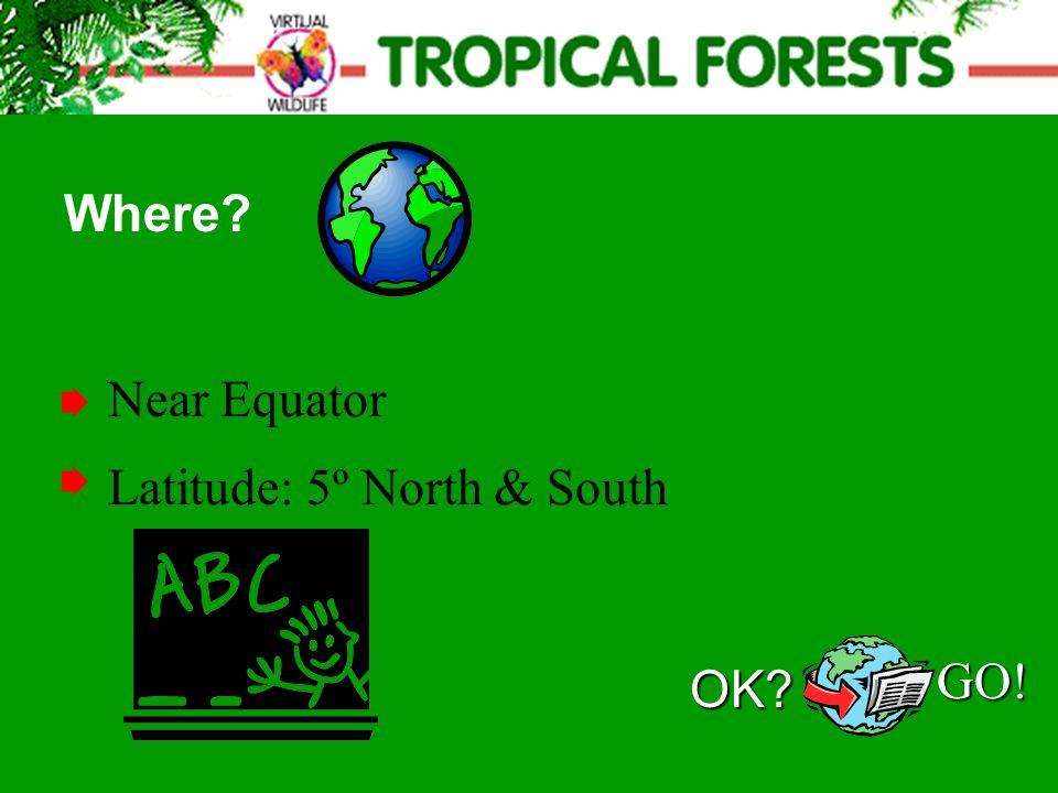 Near Equator Where? Latitude: 5º North & South OK? GO!