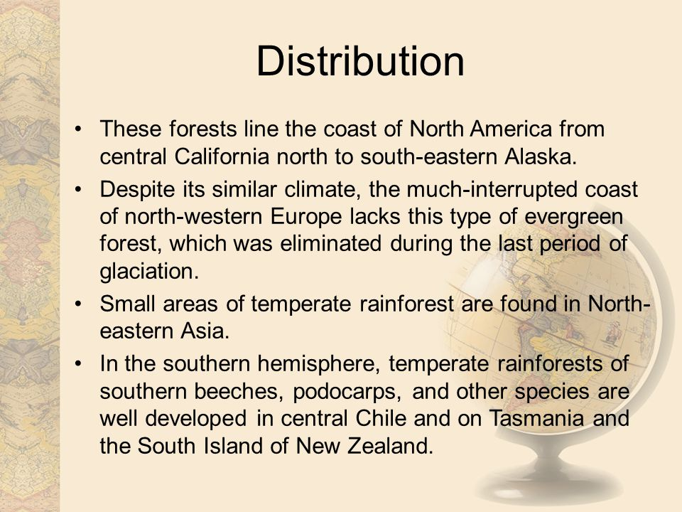 Distribution These forests line the coast of North America from central California north to south-eastern Alaska.