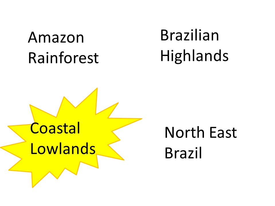 Amazon Rainforest North East Brazil Coastal Lowlands Brazilian Highlands
