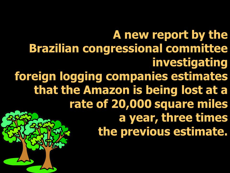 A new report by the Brazilian congressional committee investigating foreign logging companies estimates that the Amazon is being lost at a rate of 20,000 square miles a year, three times the previous estimate.