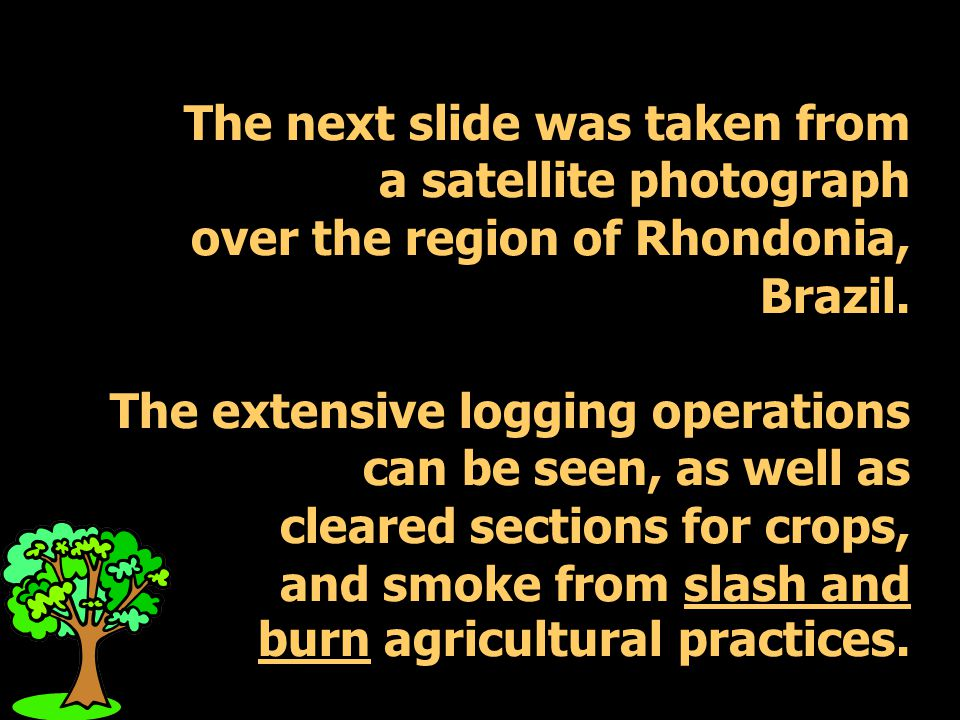 The next slide was taken from a satellite photograph over the region of Rhondonia, Brazil.