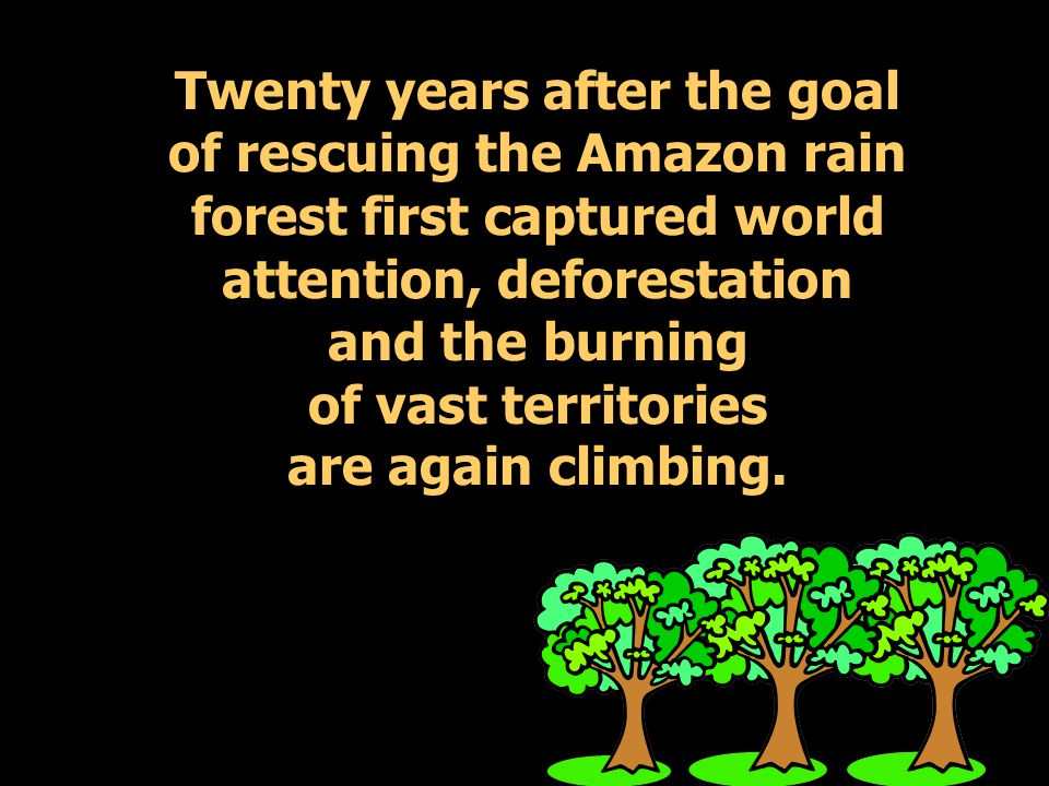 Twenty years after the goal of rescuing the Amazon rain forest first captured world attention, deforestation and the burning of vast territories are again climbing.