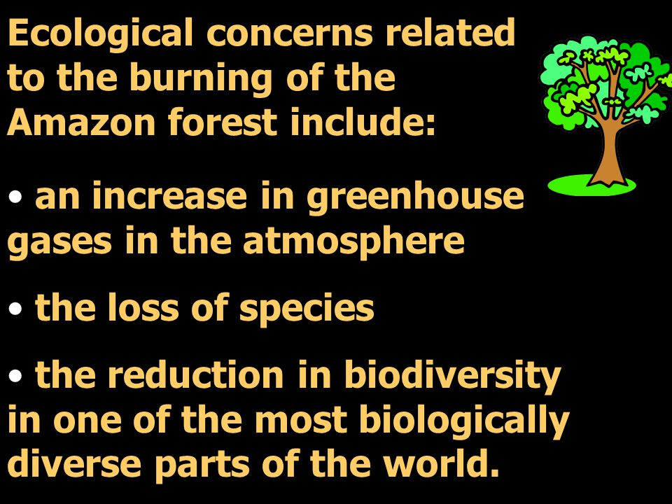 Ecological concerns related to the burning of the Amazon forest include: an increase in greenhouse gases in the atmosphere the loss of species the reduction in biodiversity in one of the most biologically diverse parts of the world.