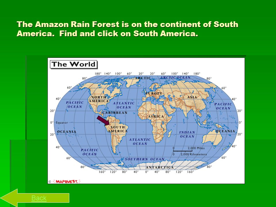 Here is a map of the world, click on the continent you think we live on. AUSTRALIA Next Back