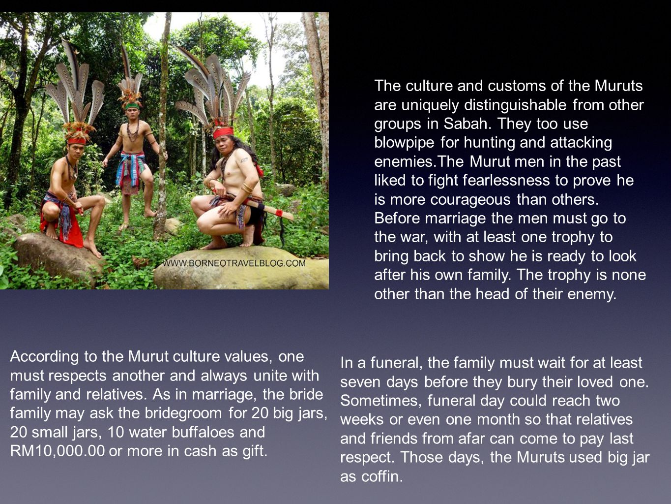 The culture and customs of the Muruts are uniquely distinguishable from other groups in Sabah.
