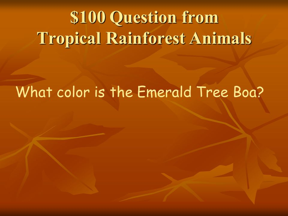 $100 Question from Man and the Rainforest Name a tribe of people who have lived in the Amazon rainforest for hundreds of years