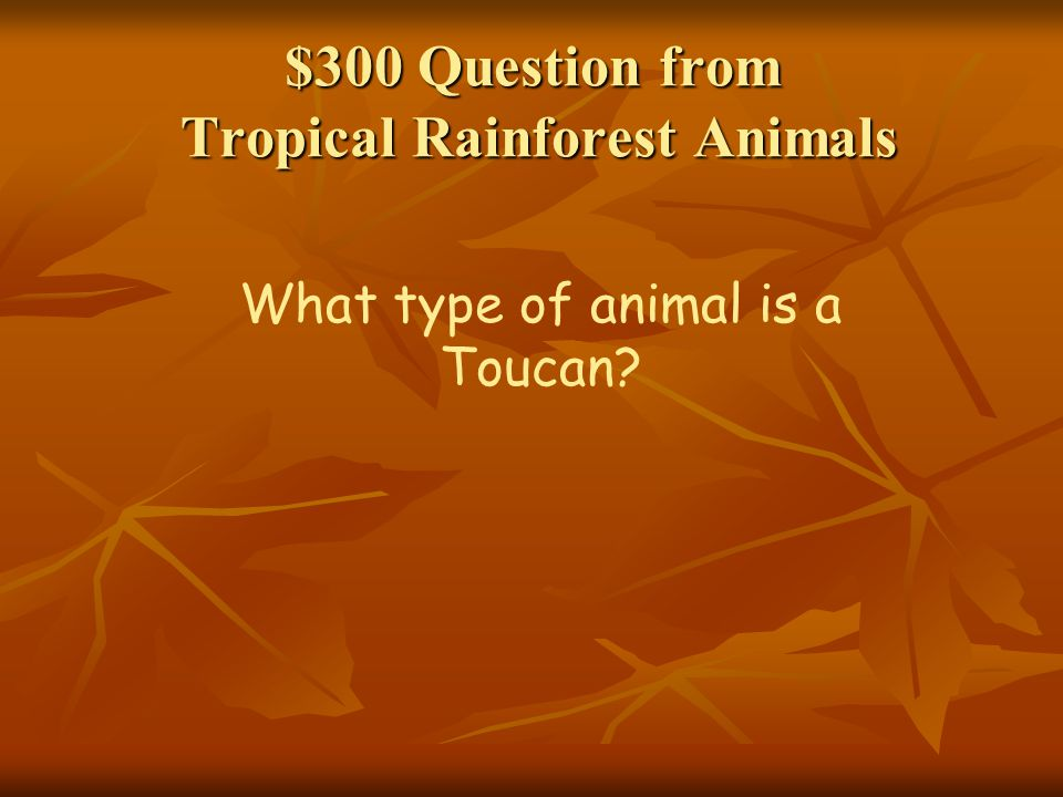 $300 Question from Types of Rainforests The climate in a tropical rain forests is __________ and __________ (do not say rainy )