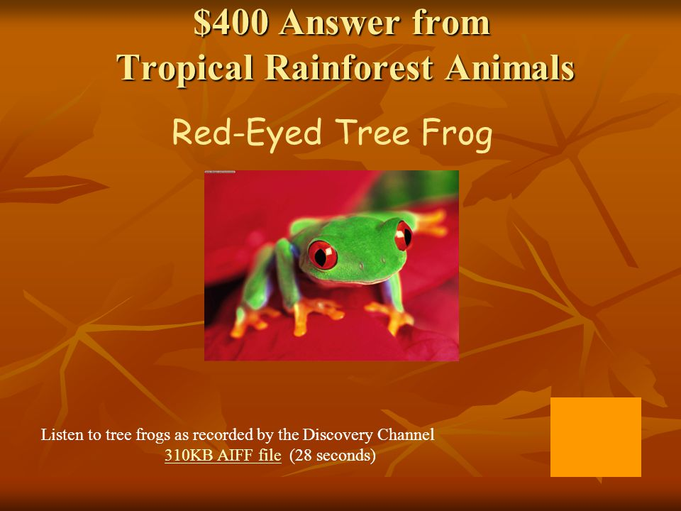 $400 Answer from Types of Rainforests Tropical