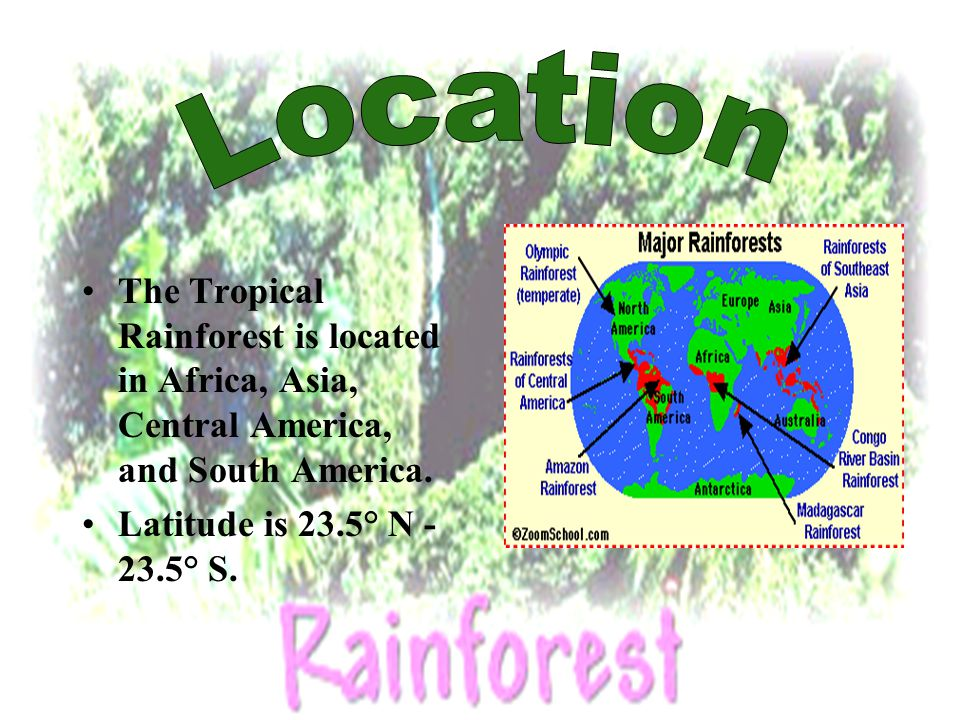 The Tropical Rainforest is located in Africa, Asia, Central America, and South America. Latitude is 23.5° N - 23.5° S.