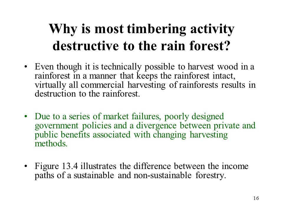 16 Why is most timbering activity destructive to the rain forest? Even though it is technically possible to harvest wood in a rainforest in a manner t
