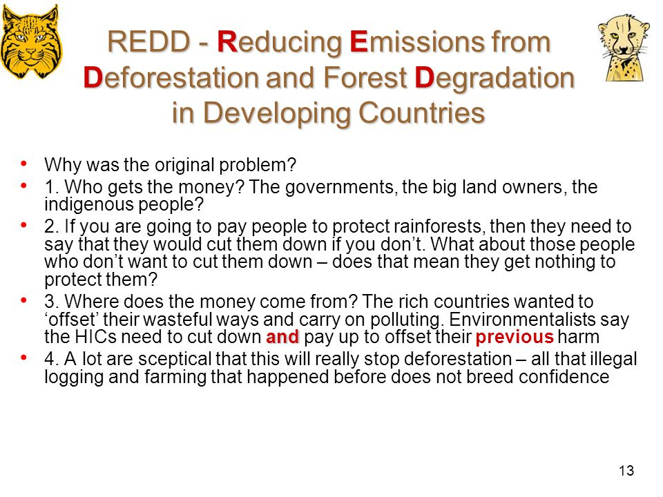 14 REDD - Reducing Emissions from Deforestation and Forest Degradation in Developing Countries Why is it so important to climate change.