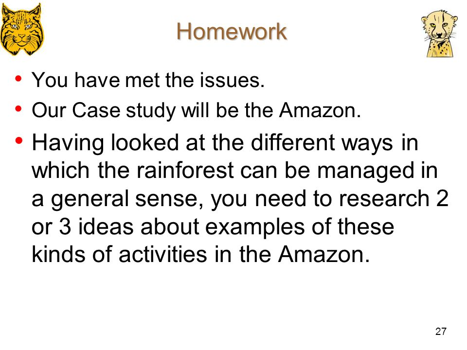 27 Homework You have met the issues. Our Case study will be the Amazon. Having looked at the different ways in which the rainforest can be managed in
