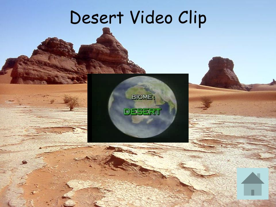 Desert Video Clip