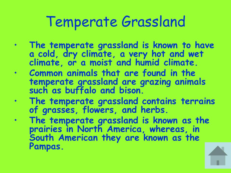 Temperate Grassland The temperate grassland is known to have a cold, dry climate, a very hot and wet climate, or a moist and humid climate. Common ani