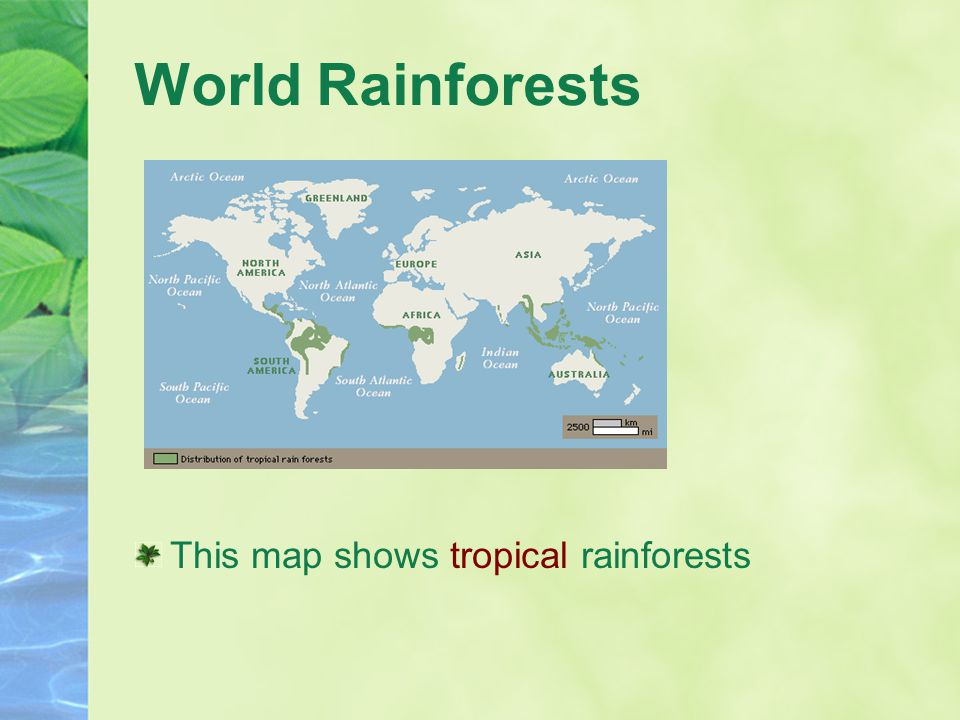 World Rainforests This map shows tropical rainforests