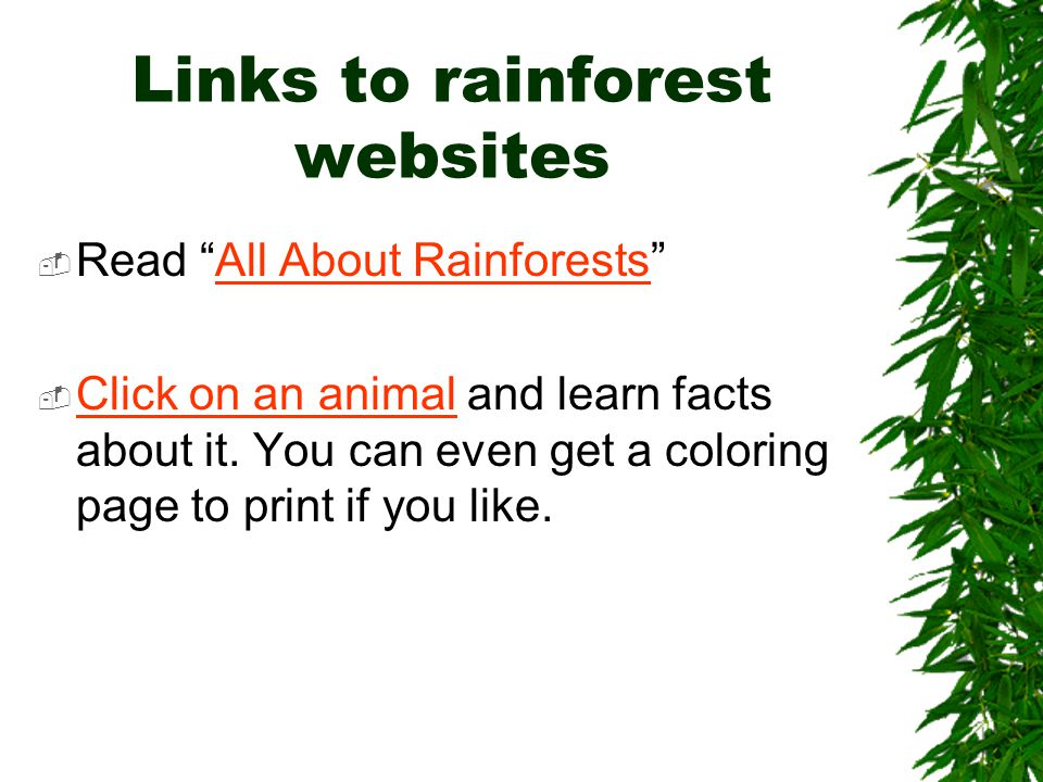 Links to rainforest websites  Read All About Rainforests All About Rainforests  Click on an animal and learn facts about it.
