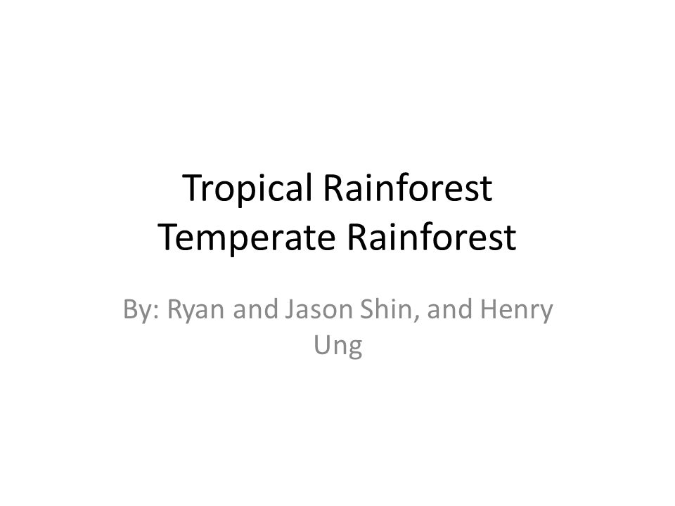 Tropical Rainforest Temperate Rainforest By: Ryan and Jason Shin, and Henry Ung