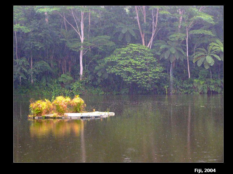 Fiji, 2004