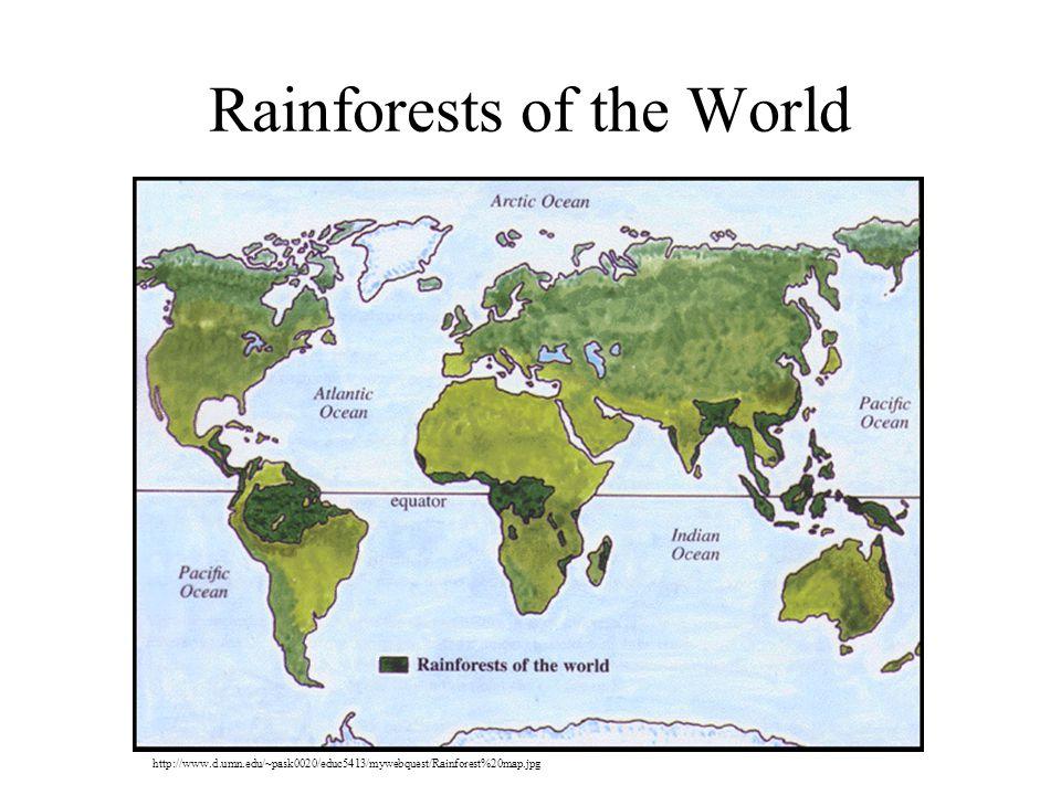 Rainforests of the World http://www.d.umn.edu/~pask0020/educ5413/mywebquest/Rainforest%20map.jpg