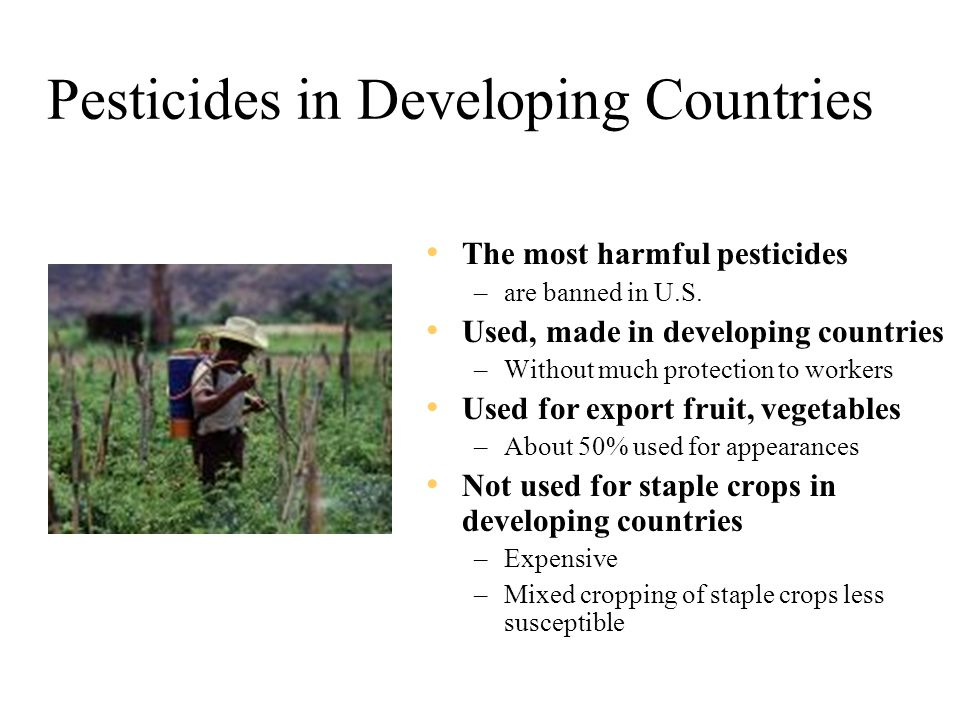 Pesticides in Developing Countries The most harmful pesticides –are banned in U.S.