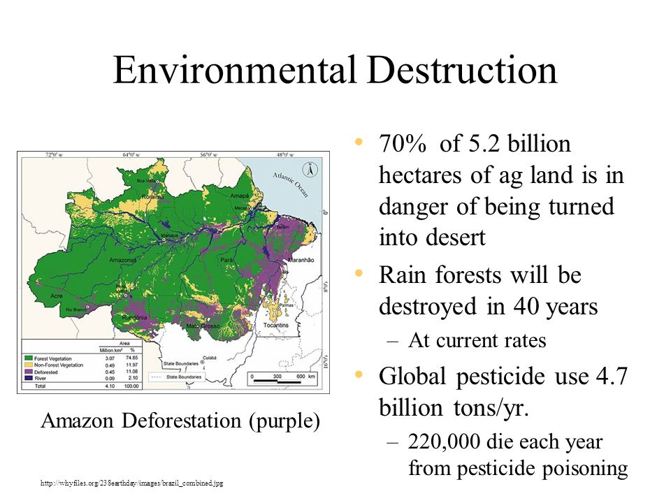 Environmental Destruction 70% of 5.2 billion hectares of ag land is in danger of being turned into desert Rain forests will be destroyed in 40 years –At current rates Global pesticide use 4.7 billion tons/yr.