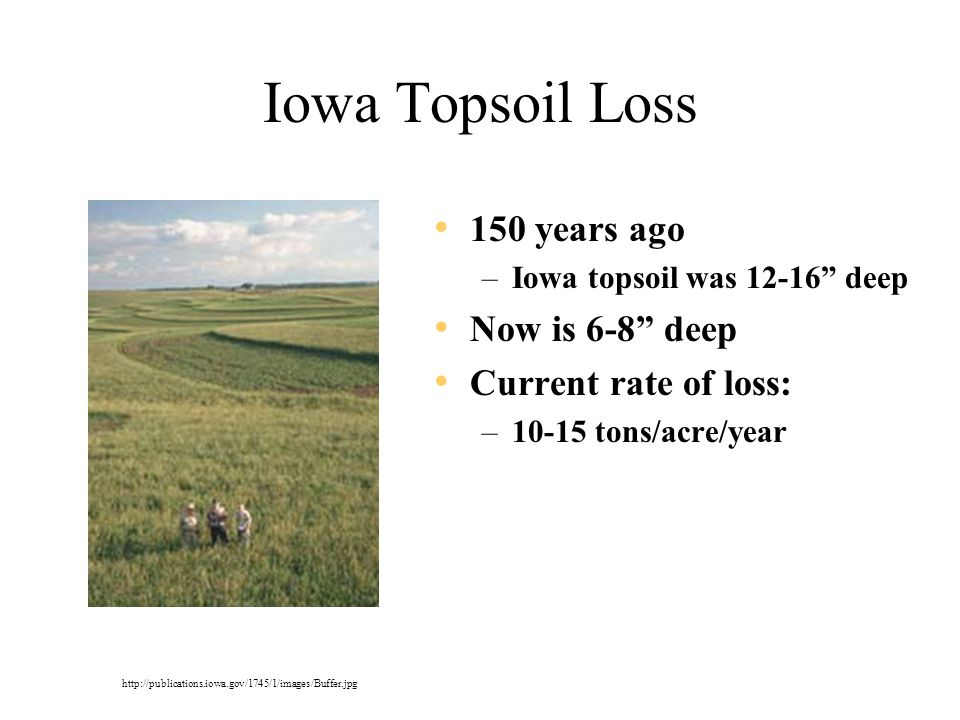 Iowa Topsoil Loss 150 years ago –Iowa topsoil was 12-16 deep Now is 6-8 deep Current rate of loss: –10-15 tons/acre/year http://publications.iowa.gov/1745/1/images/Buffer.jpg
