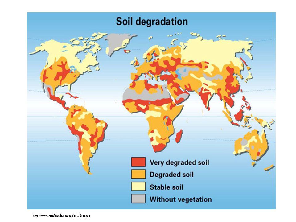 Global Soil Degradation http://www.utafoundation.org/soil_loss.jpg