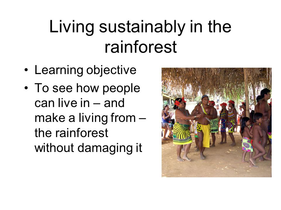 Living sustainably in the rainforest Learning objective To see how people can live in – and make a living from – the rainforest without damaging it
