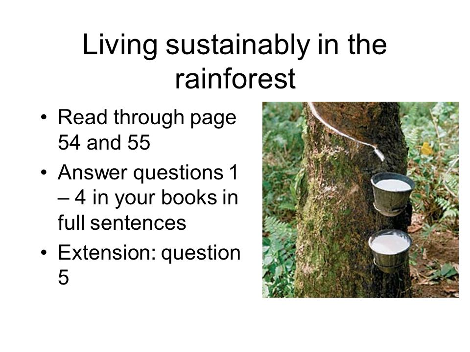 Living sustainably in the rainforest Read through page 54 and 55 Answer questions 1 – 4 in your books in full sentences Extension: question 5